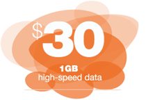 30 1GB High Speed Data Brazcom Wireless